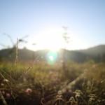 あさが来た!ベトナム農村で見た朝の風景