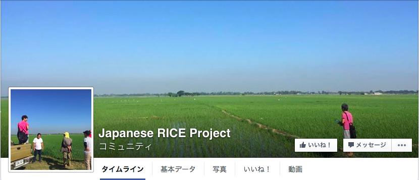 japaneseRice